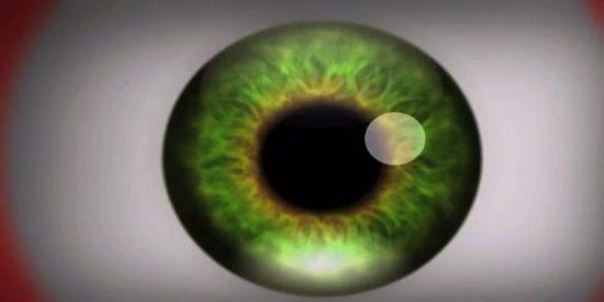 ¿Te atreves a experimentar con este vídeo lo que se siente con las drogas alucinógenas?