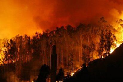"""Quintana asegura que """"el peso de la ley"""" caerá sobre los incendiarios"""