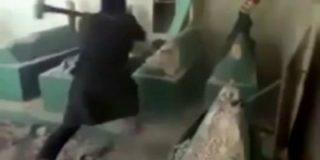 Los rebeldes islamistas destrozan la tumba del profeta Jonás a mazazo limpio