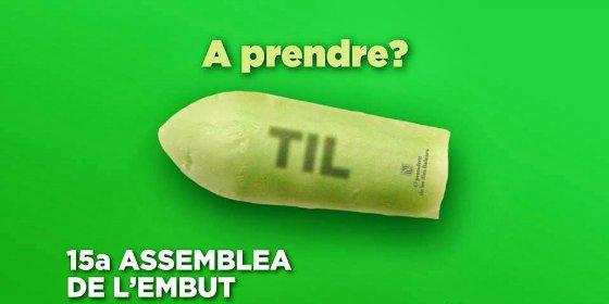 Sopapo del TSJIB al Govern: los servicios mínimos que fijó durante la huelga contra el TIL eran del todo ilegales
