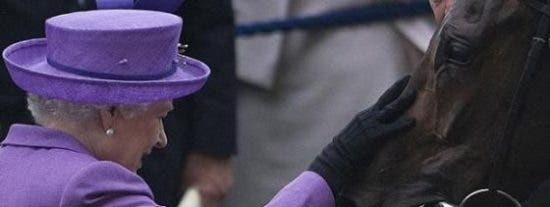 A la reina Isabel II su caballo le sale rana: da positivo en morfina