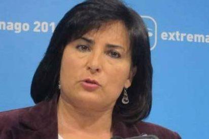 """PP reprocha el """"caradurismo"""" del PSOE al criticar los seguros agrarios cuando su modelo fue """"insostenible"""""""