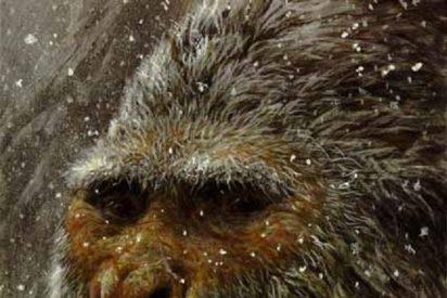 Los análisis de ADN de los pelos del misterioso Yeti dejan a muchos con una cara de monote de espanto