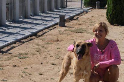 Alajandra Botto y su campaña contra el abandono de animales en El Programa de Verano
