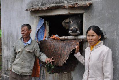 Indígenas en Vietnam: cuando la tierra es vida y espíritu