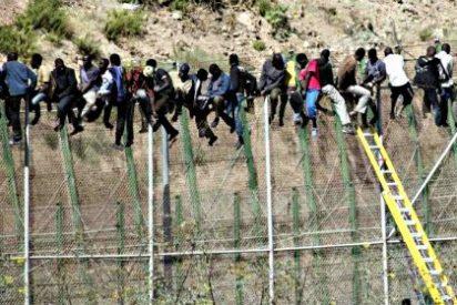 El último inmigrante subsahariano encaramado a la valla de Melilla se baja tras aguantar 16 horas