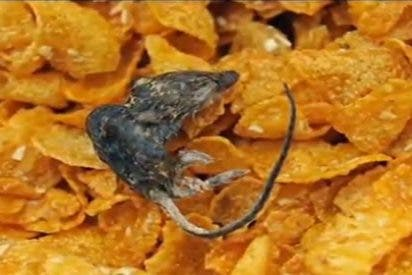 """Una abuela encuentra un ratón en un paquete de cereales Kellogg's y se pone """"enferma"""""""