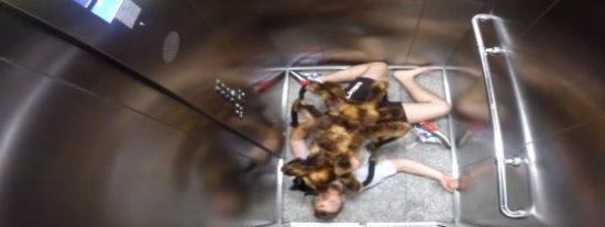 Una araña mutante que devora humanos aterroriza a la ciudad de Nueva York