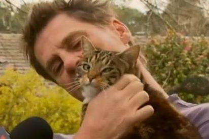 El vídeo del gato que evitó que su dueño muriera achicharrado en un incendio