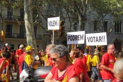 Más de medio millón de catalanes forman la 'V' de la Diada