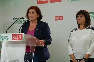 El PSOE exige la retirada definitiva de la reforma de la ley del aborto
