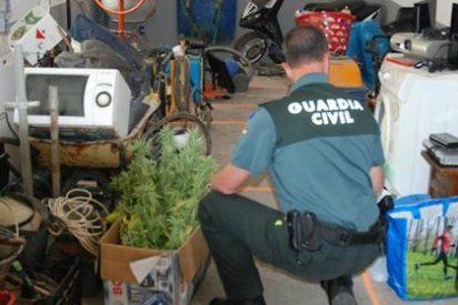 Detenida una decena de personas por más de un centenar de robos y hurtos