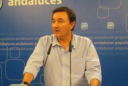 """El PP pregunta a Susana Díaz por """"el dinero"""" de las becas universitarias"""