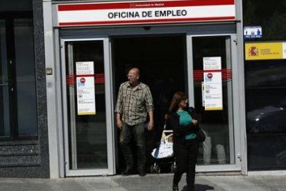 El paro en España superó el 32% entre las personas con bajo nivel educativo en 2013, según el IEE