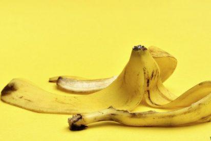 Premios Ig Nobel 2014: Las 10 investigaciones más disparatadas del año