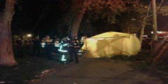 Muere un anciano de 72 años en Madrid aplastado por la rama de un árbol