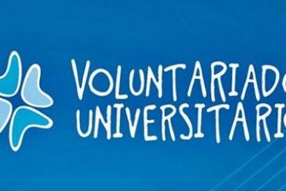Más del 80% de las acciones de voluntariado universitario se han desarrollado en España