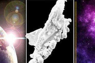 La asombrosa foto de un diminuto extraterrestre captada por unos científicos pone el grito en el cielo