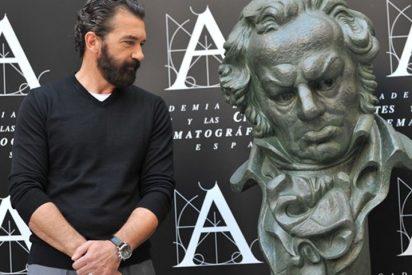 """Antonio Banderas, sobre Melanie: """"El único vínculo que puedo compartir con ella, es el profesional"""""""