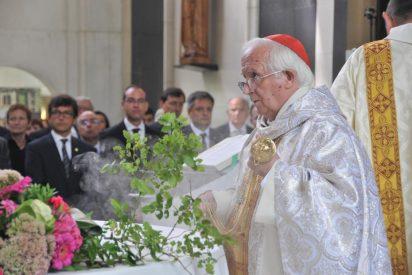 Cinco cardenales acompañarán a Cañizares