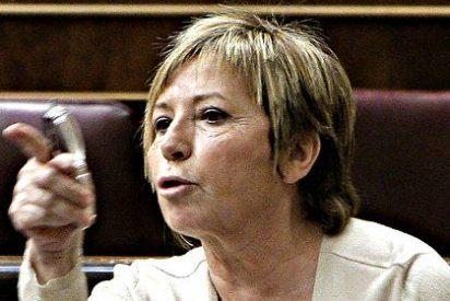 España: Vacas locas (segunda parte) y no aprendemos