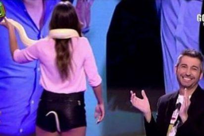 Una serpiente roza las partes más íntimas de Cristina Pedroche y sube la audiencia de 'Zapeando'