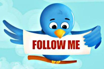 ¿Es Twitter un buen sitio para buscar empleo?