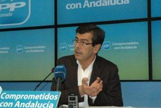 """El PP andaluz cuestiona que la Junta hable de """"colaboración"""" con la Justicia y """"retire refuerzos"""" a Alaya"""