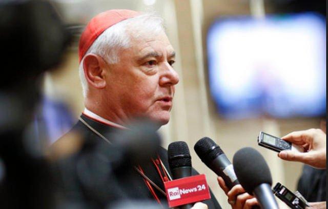 """Cardenal Müller: """"La Iglesia no puede reconocer a las parejas homosexuales"""""""