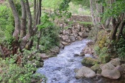 El cambio climático calienta dos grados el agua en Sierra Nevada