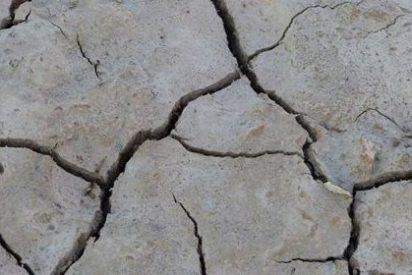 La sal degrada un área de cultivo del tamaño de Francia