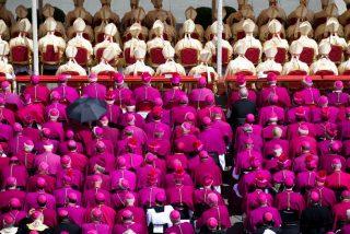 """""""Los obispos y el Papa no están divididos en partidos políticos"""""""