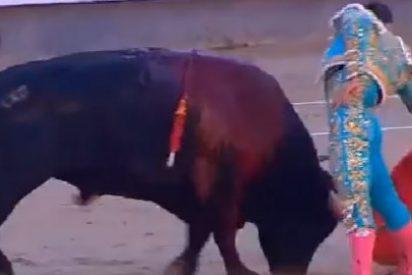 Una multitudinaria marcha rechaza en A Coruña las corridas de toros