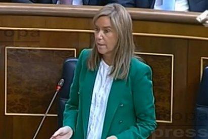"""Felicidad y cachondeo de los famosos por la salida de Ana Mato:""""Su mejor medida ha sido dimitir"""""""