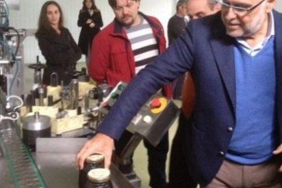 La producción de miel en Extremadura oscila entre las 5.000 y 7.000 toneladas anuales
