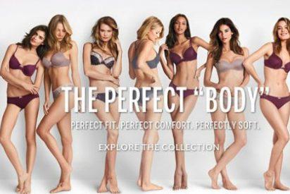 ¿Quieres saber por qué la nueva campaña de Victoria's Secret saca de quicio a la más pintada?