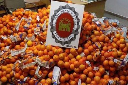 Intervenidos en Mérida 1.200 kilos de naranjas