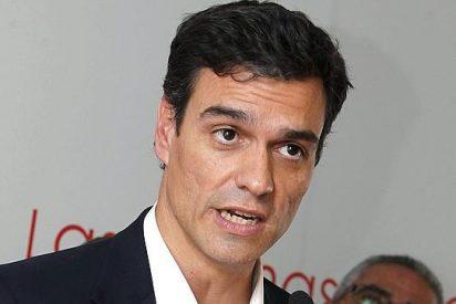 El guapo de Pedro Sánchez lo ve feo y se baja los pantalones: pactará con PP y Podemos