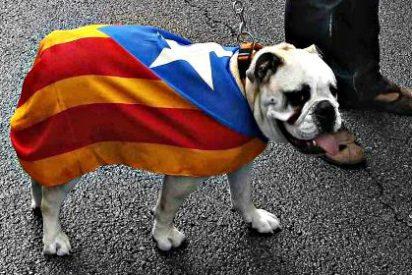 El independentismo catalán perjudica en el extranjero a España mucho más que la corrupción