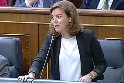 """Soraya muerde la yugular de Sánchez en el cuello de Antonio Hernando: """"Que no se note tanto que le avergüenza lo que dice su secretario general"""""""