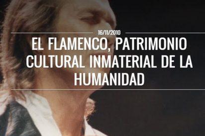 Ya está disponible la exposición 'El Flamenco, Patrimonio Cultural Inmaterial de la Humanidad'