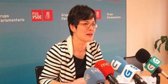 """Patricia Vilán: """"Exigimos una franja de protección completa entre crematorios y zonas habitadas"""""""