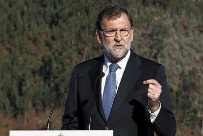 """La 'torta gallega' de Rajoy a Podemos: """"Adanes que se creen que el mundo comienza con ellos"""""""