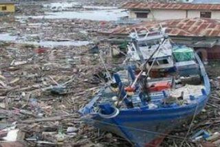 Más allá de las olas del tsunami