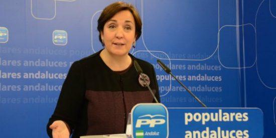 El PP pide la comparecencia de la consejera de Salud para explicar el Plan de Mejora de Urgencias