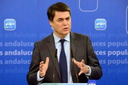 """Carlos Rojas (PP): """"Díaz es el socialismo más radical que ha fracasado en el gobierno de Andalucía"""""""