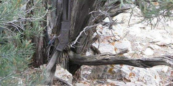 ¿Quién se dejó hace 132 años un rifle Winchester apoyado contra un árbol de Nevada?