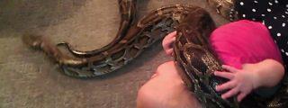 El vídeo del bebé a quien sus padres dejan jugar con... ¡una serpiente pitón!