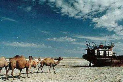 Desierto o Vergel: Globalizar la indiferencia o el amor