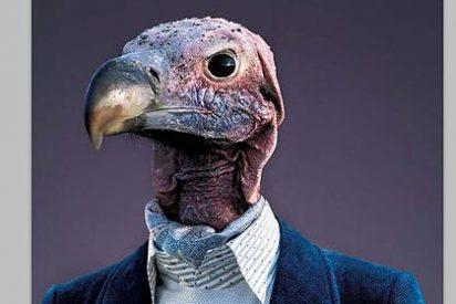 Cómo ser más pájaro que nadie y cobrar un pico en prestaciones sociales